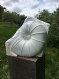 Emerging Fossil by LUCY UNWIN, Sculpture, Carrara Marble